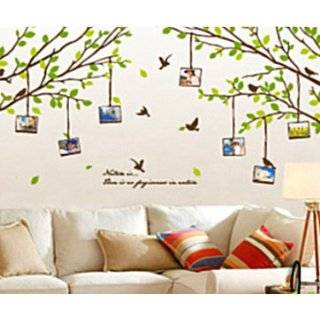 Decal Sticker   Green Tree Branches with Flying Birds & Photo Frames