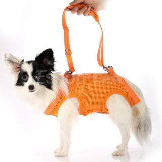 Orange Sling Pet Dog Cats Harness Travel Carrier Bag Free Leash 4 Sizes s M L XL