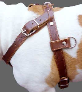 "Brown Pulling Leather Dog Harness 1""Wide Padded Large"