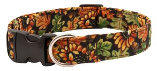 Beautiful Autumn Leaves Designer Dog Collar Collars