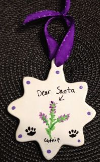 Hand Painted Personalized Dear Santa Christmas Catnip Cat Ornament