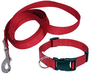 Deluxe Nylon Dog Collar and Leash Set Various Colors Sizes Available