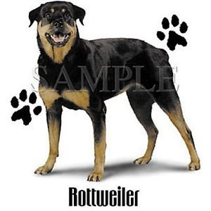Rottweiler Puppy Dog with Paw Prints White T Shirt $9 95