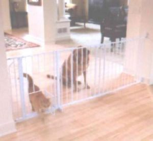 New Carlson 1210PW Maxi Pet Gate with Small Pet Door $100