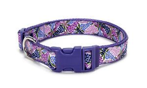 "Douglas Paquette Nylon Dog Collars Leads Harnesses ""Lupine"" Design"