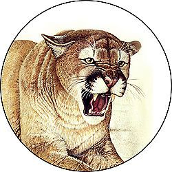 Cougar Custom Spare Tire Cover Wheel Cover