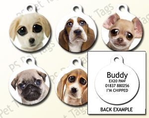 Double Sided Cool Cute Personalised Pet Dog Name ID Identity Tag
