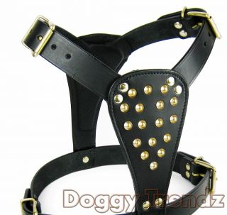 Staffordshire Bull Terrier STAFFY Staff Leather Dog Harness Softly Padded Brass