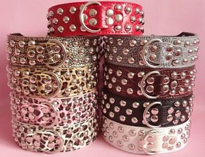 Brand New Mushroom Studded Leather Dog Collar Large Dog Pitbull Terrier s M L