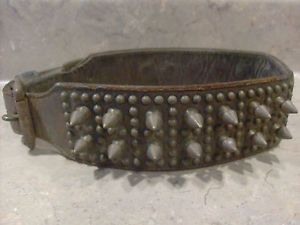 Antique Brass Studded Spiked Heavy Leather Dog Collar