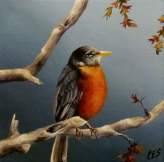 Original Daily Painting by CES Robin Spring Bird Tree Wildlife Nfac EBSQ Art