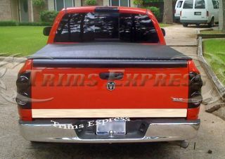 2002 2008 Dodge RAM 1500 2500 Tailgate Trim Accent Molding Stainless Steel Cover