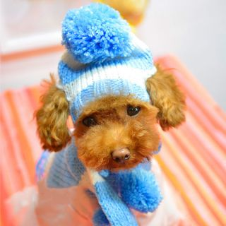 Pet Dog Apparel Winter Scarf Pom Pom Cap Collar Clothes Costume Warm Knitted Hat