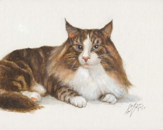 ※ Oil Painting Norwegian Forest Cat Brown Tabby