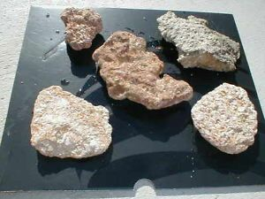Set of 5 Aquarium Natural Oyster Shell Lava Rocks Marine Fish Tank Cichlids