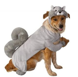 Squirrel Dog Pet Halloween Costume Size x Small XSmall