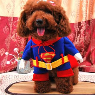Super Man Small Dog Pet Puppy Halloween Costume Coat Cape Cloak Clothes 5 Size