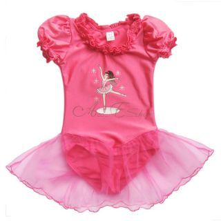 Fairy Girls Ballet Dance Dress Tutu Leotard Kid Dancewear Costume Sz 4 5 6