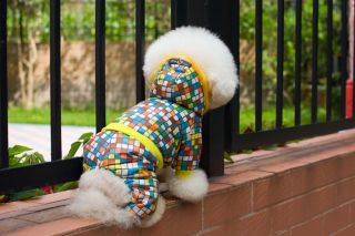 Autumn Winter Lump Colorful Dog Clothing Wear Coat Warm Jacket Sweater Clothes