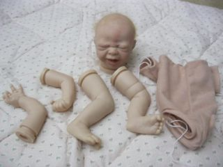 Reborn Kit Head Painted Limbs not Painted Includes Free Soft Body Baby NR
