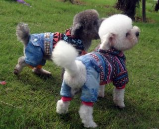 Autumn Winter Colorful Dog Clothing Coats Wear Warm Dog Jacket Sweater Clothes
