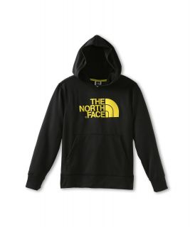 The North Face Kids Boys Logo Surgent Pullover Hoodie (Little Kids/Big Kids)