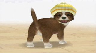 Nintendogs Chihuahua Friends Nintendo DS and DSi 045496736439