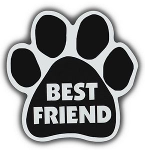 Dog Cat Paw Shaped Magnets Best Friend Cars Trucks Refrigerators