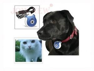 Security Camera Monitor for Your Pets Wireless Camera Dogs Cats Digital Camera