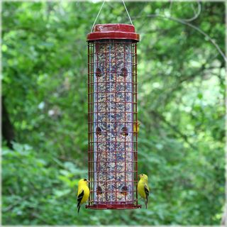 Perky Pet Wild Bird Easy Feeder   Bird Feeders