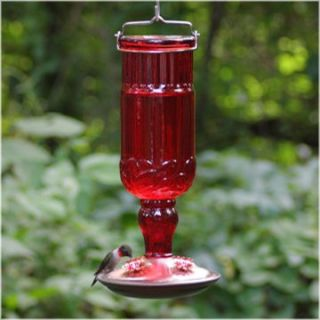Perky Pet 24 oz. Red Antique Bottle Hummingbird Feeder   Bird Feeders
