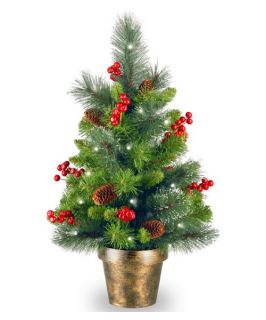 2 ft. Crestwood Spruce Pre Lit Battery Operated LED Christmas Tree   Christmas Trees