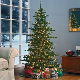 Woodland Slim Pre lit Christmas Tree   Christmas Trees