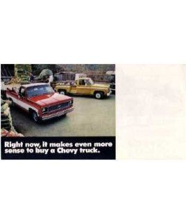 1974 Chevrolet Truck Sales Brochure Literature Book Colors Options Specification Automotive